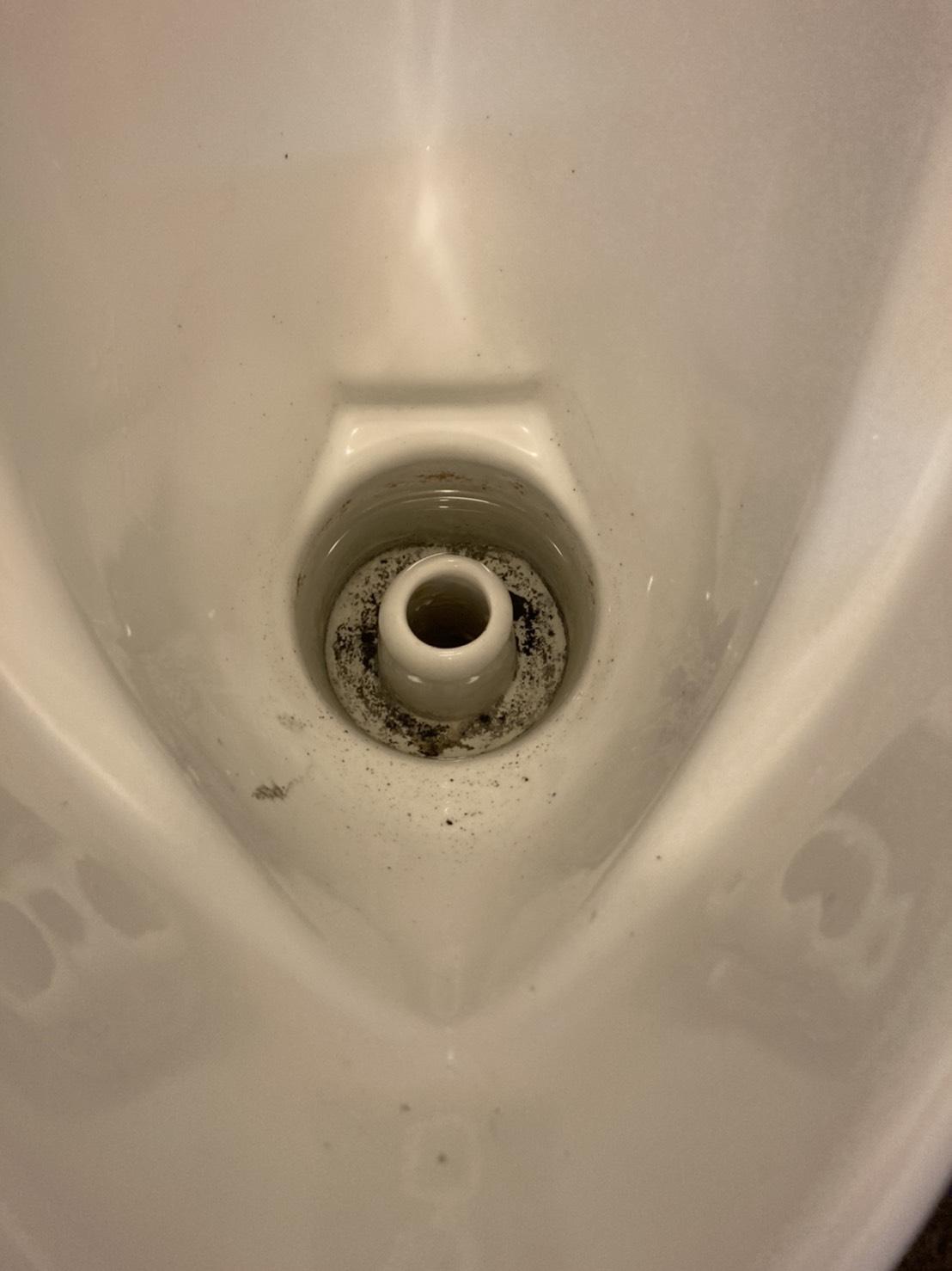 トイレ施工028